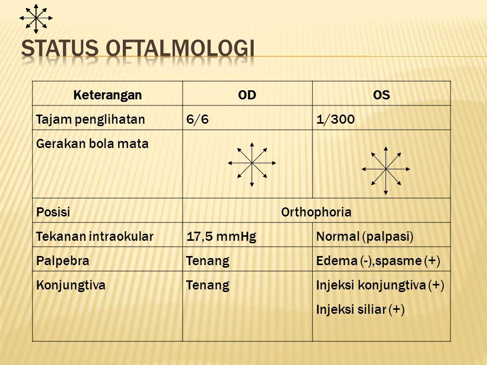 Status oftalmologi Keterangan OD OS Tajam penglihatan 6/6 1/300