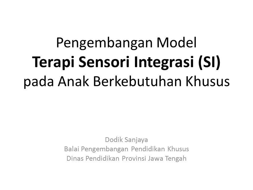 Pengembangan Model Terapi Sensori Integrasi (SI) pada Anak Berkebutuhan Khusus
