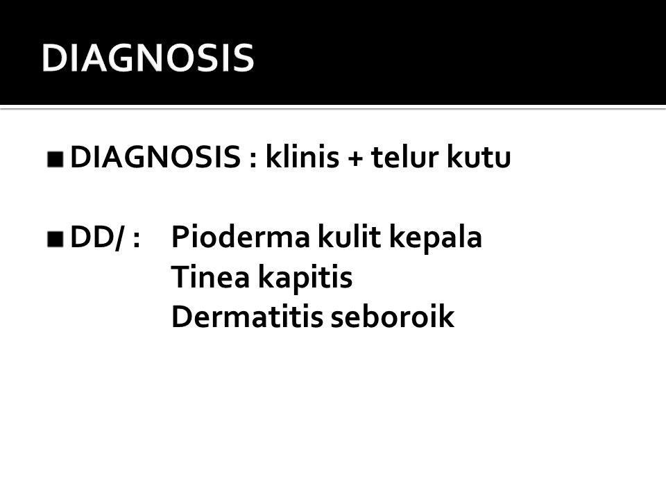 DIAGNOSIS DIAGNOSIS : klinis + telur kutu DD/ : Pioderma kulit kepala
