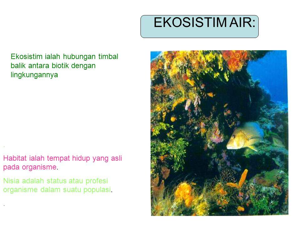 EKOSISTIM AIR: Ekosistim ialah hubungan timbal balik antara biotik dengan lingkungannya. . Habitat ialah tempat hidup yang asli pada organisme.