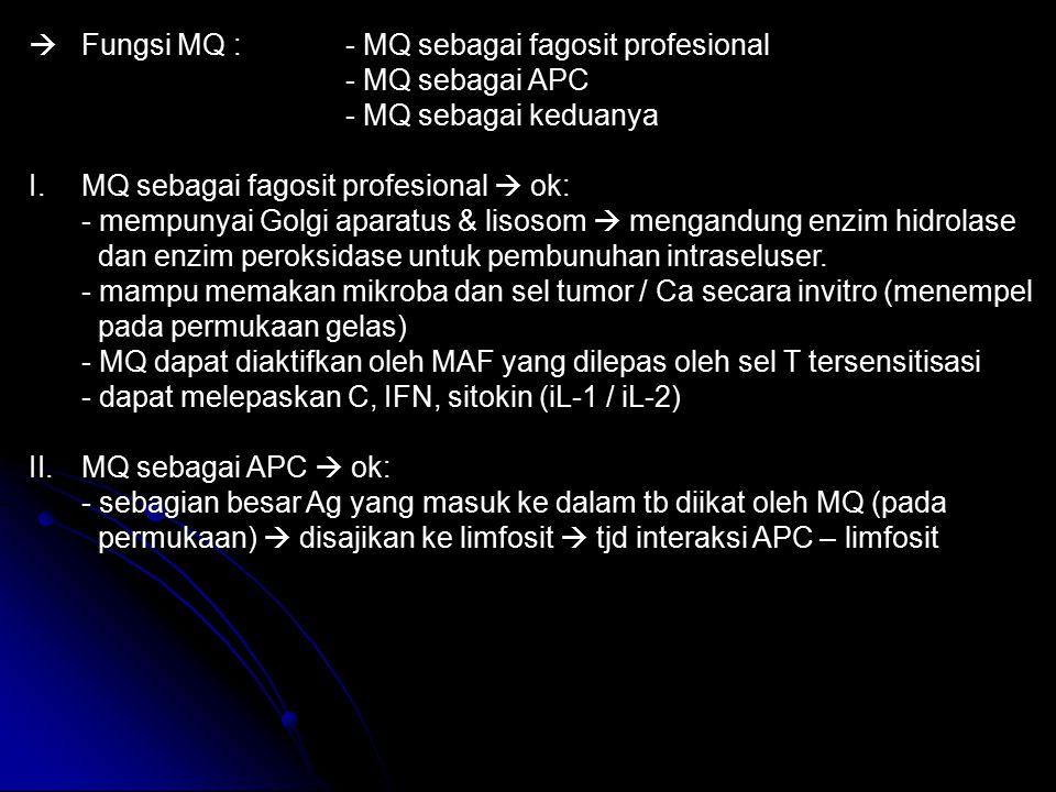 Fungsi MQ : - MQ sebagai fagosit profesional