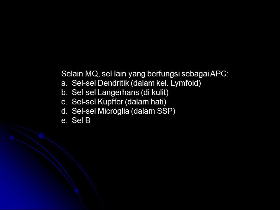 Selain MQ, sel lain yang berfungsi sebagai APC: