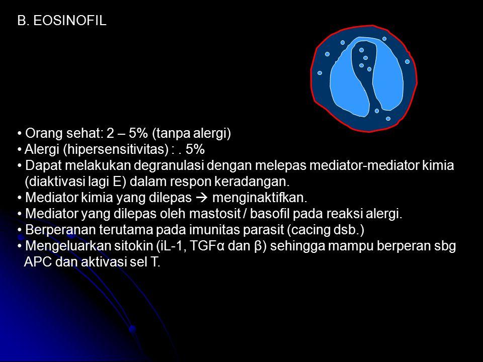 B. EOSINOFIL Orang sehat: 2 – 5% (tanpa alergi) Alergi (hipersensitivitas) : . 5%