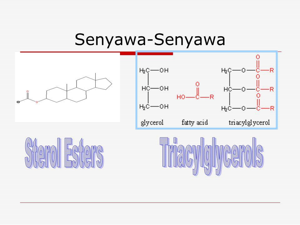 Senyawa-Senyawa Sterol Esters Triacylglycerols