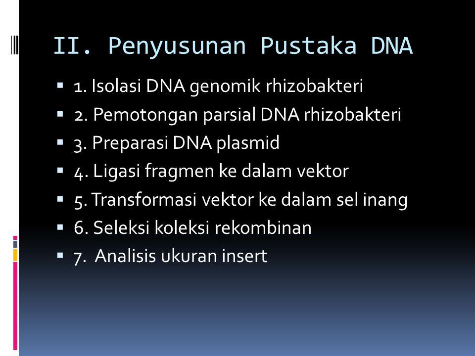 II. Penyusunan Pustaka DNA
