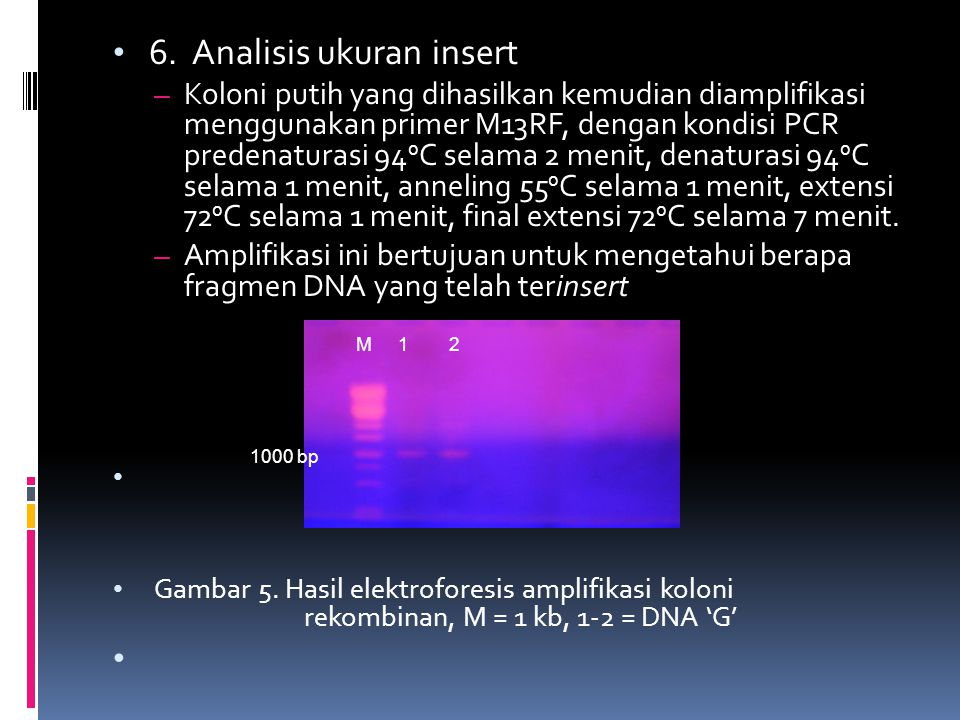6. Analisis ukuran insert