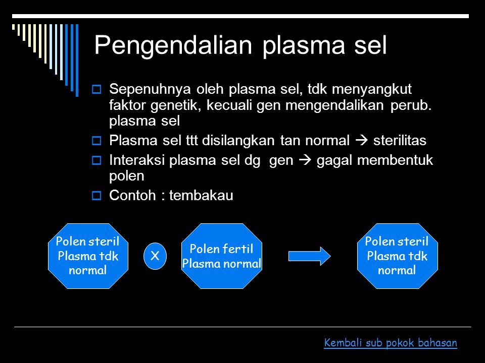 Pengendalian plasma sel