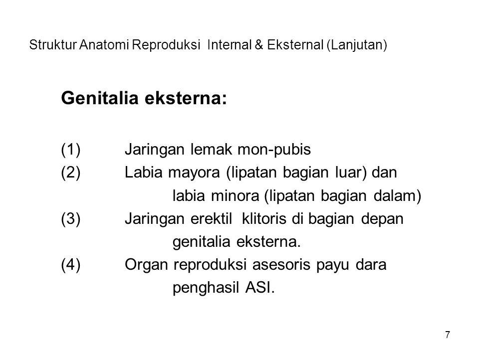 Struktur Anatomi Reproduksi Internal & Eksternal (Lanjutan)