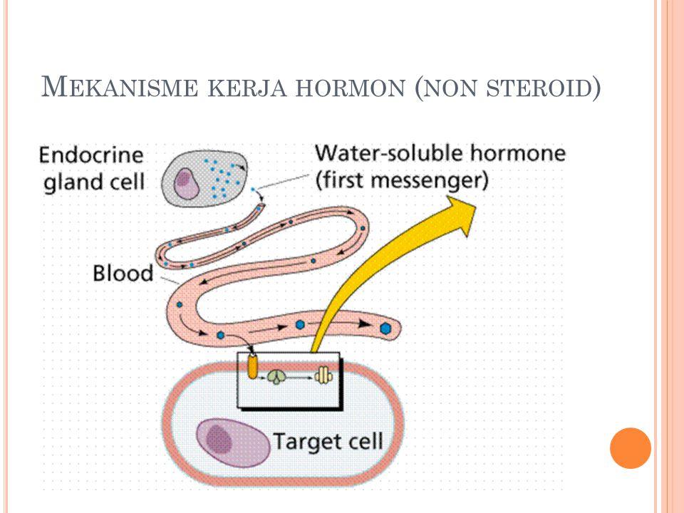 Mekanisme kerja hormon (non steroid)