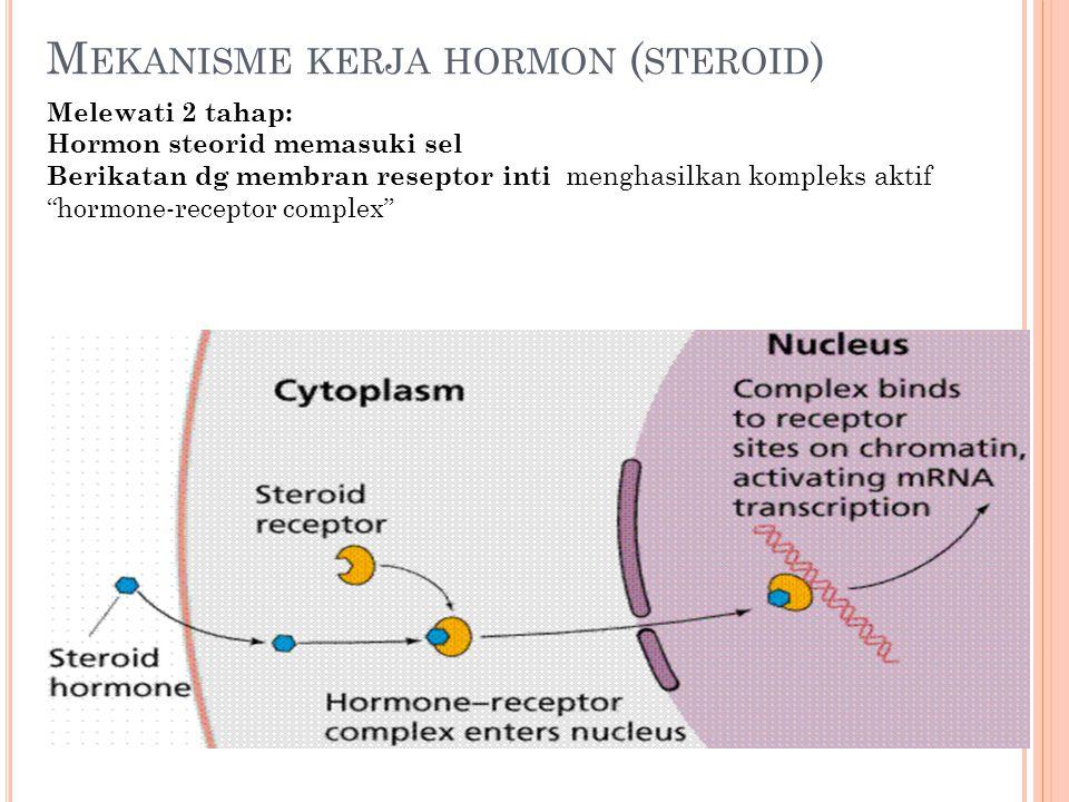 Mekanisme kerja hormon (steroid)