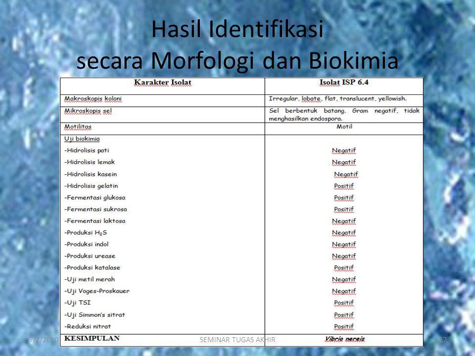 Hasil Identifikasi secara Morfologi dan Biokimia