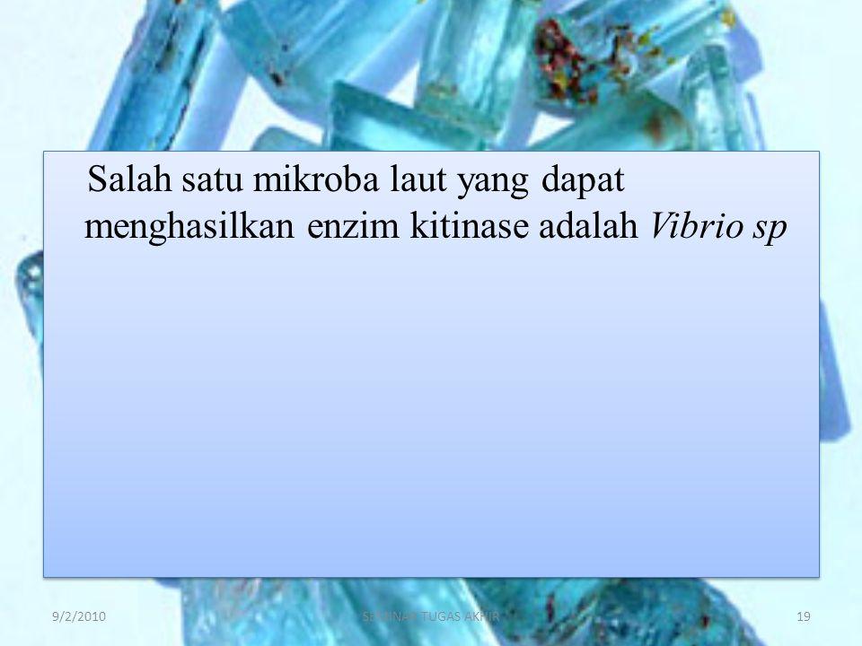Salah satu mikroba laut yang dapat menghasilkan enzim kitinase adalah Vibrio sp