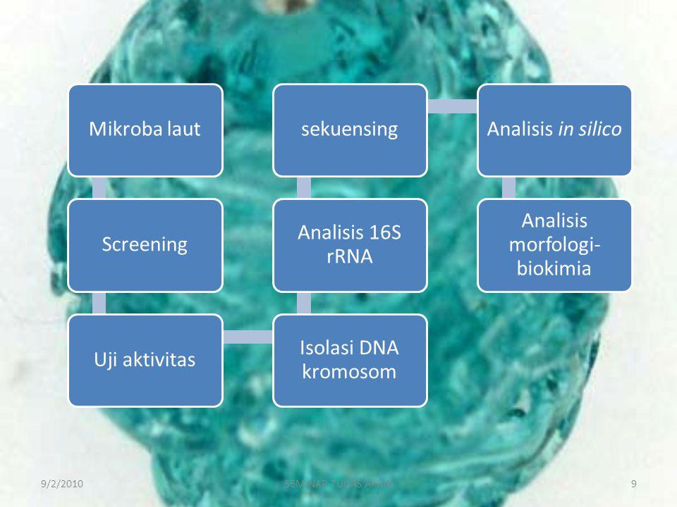 Analisis morfologi-biokimia