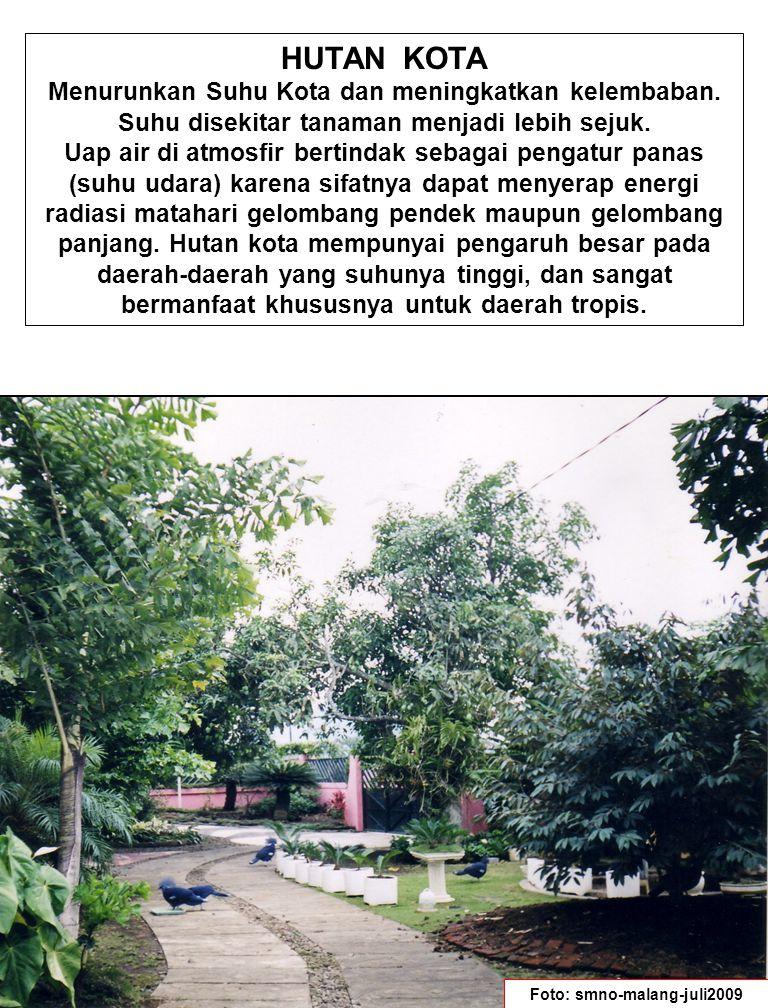 Foto: smno-malang-juli2009