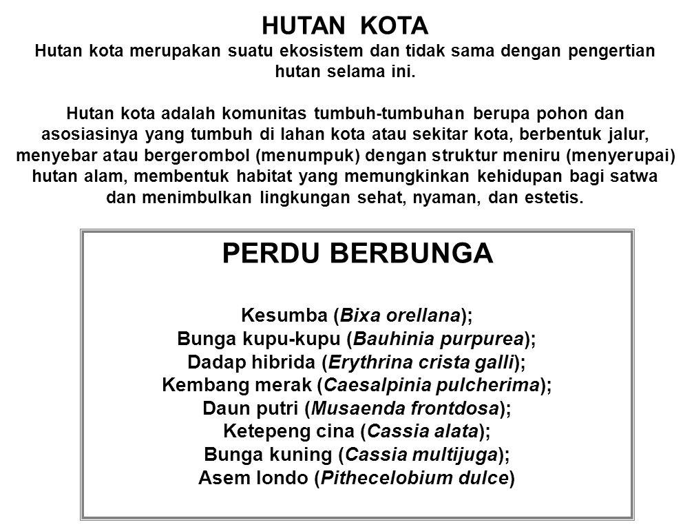 PERDU BERBUNGA HUTAN KOTA Kesumba (Bixa orellana);