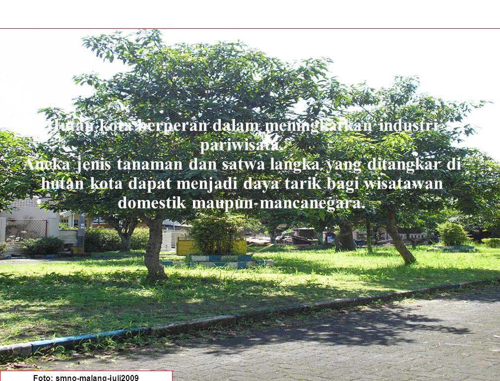Hutan kota berperan dalam meningkatkan industri pariwisata.