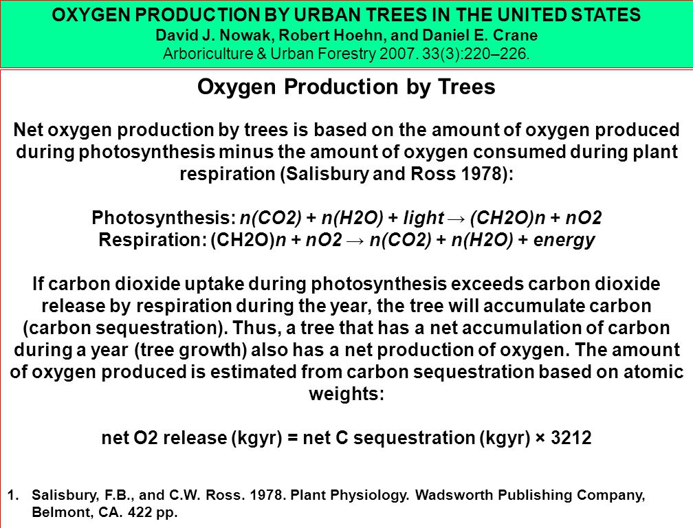 Oxygen Production by Trees