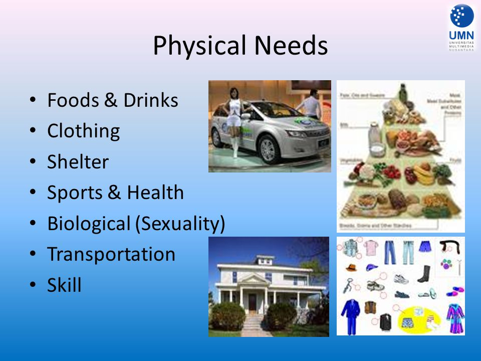 Physical Needs Foods & Drinks Clothing Shelter Sports & Health