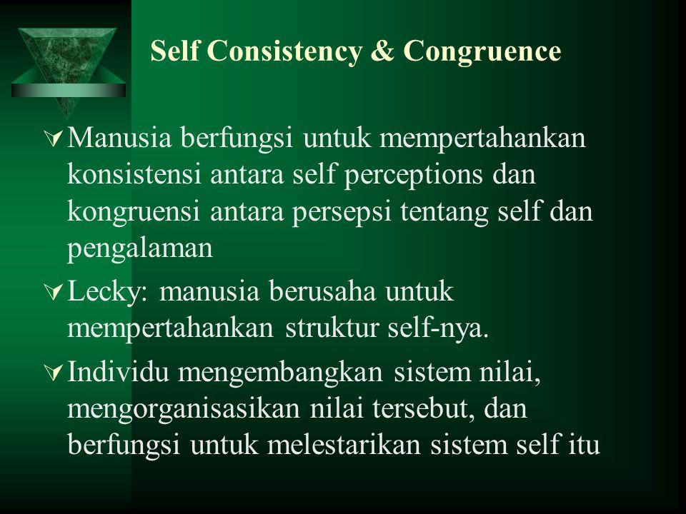 Self Consistency & Congruence