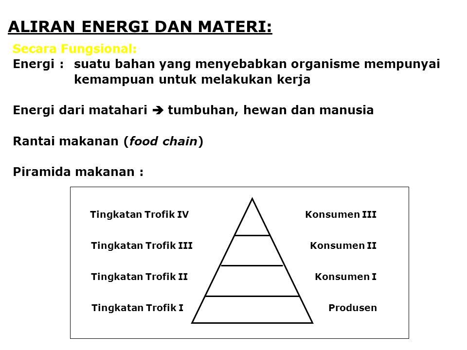 ALIRAN ENERGI DAN MATERI: