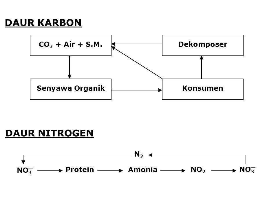 DAUR KARBON DAUR NITROGEN CO2 + Air + S.M. Senyawa Organik Dekomposer
