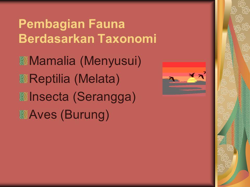 Pembagian Fauna Berdasarkan Taxonomi