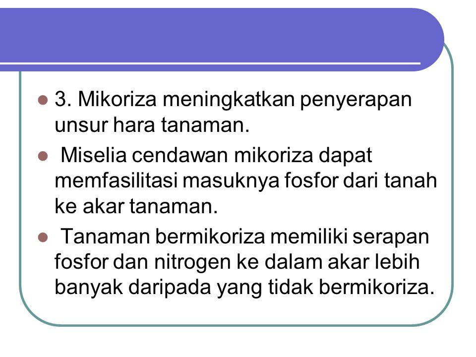 3. Mikoriza meningkatkan penyerapan unsur hara tanaman.