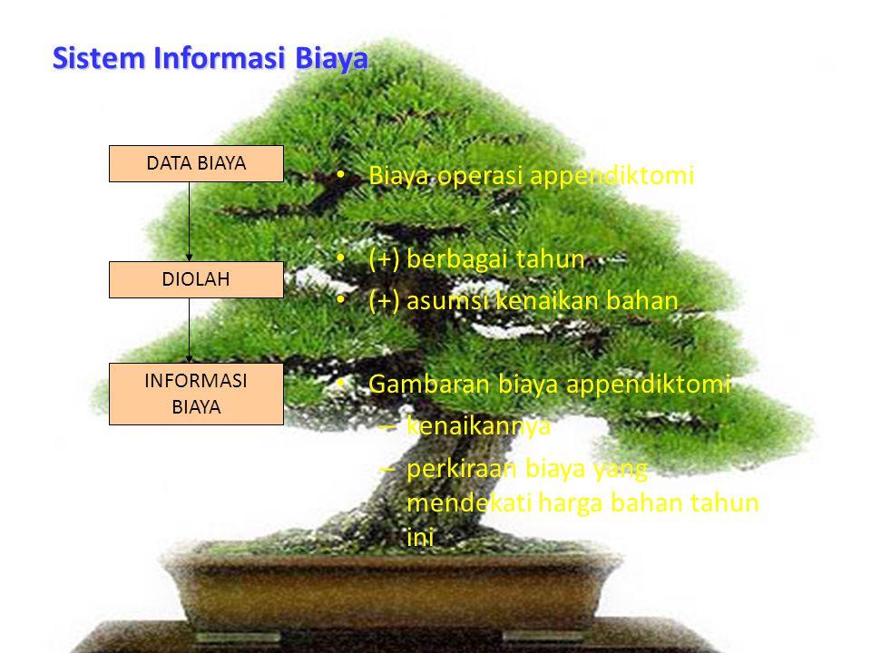 Sistem Informasi Biaya