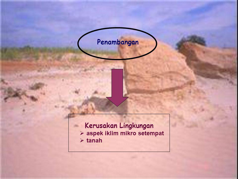 Penambangan Kerusakan Lingkungan aspek iklim mikro setempat tanah