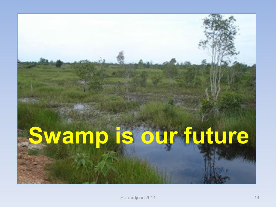 Swamp is our future Suhardjono 2014