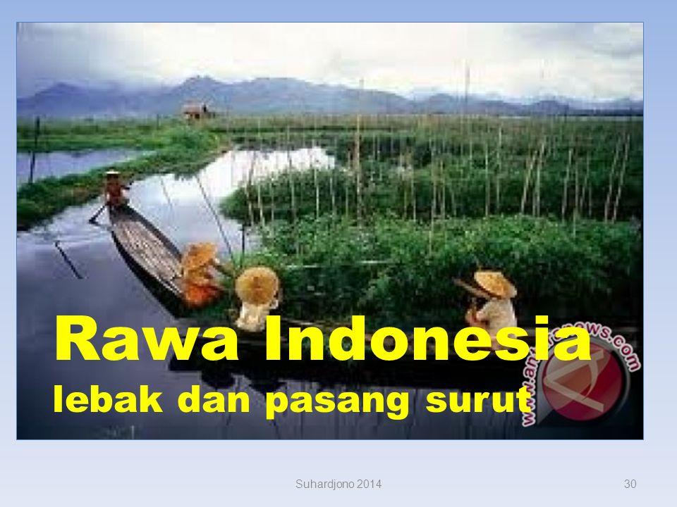 Rawa Indonesia lebak dan pasang surut Suhardjono 2014