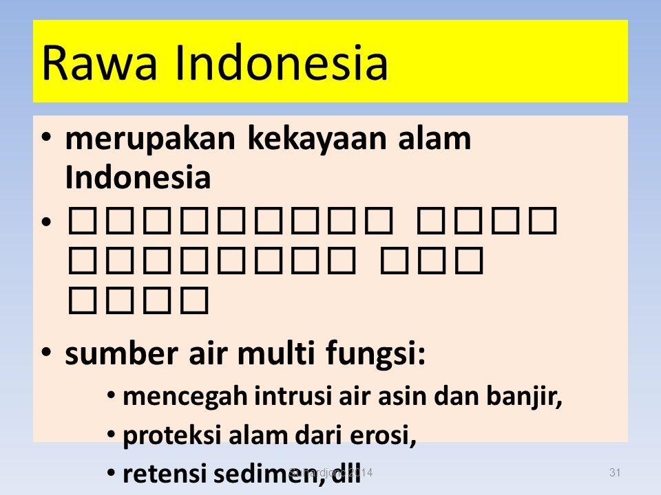 Rawa Indonesia merupakan kekayaan alam Indonesia