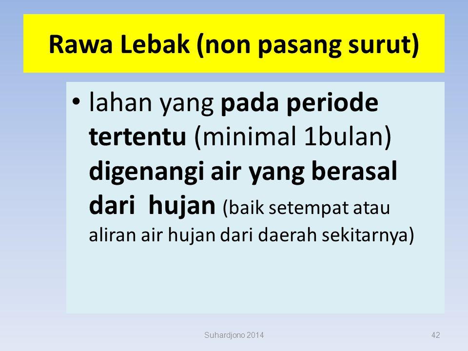 Rawa Lebak (non pasang surut)