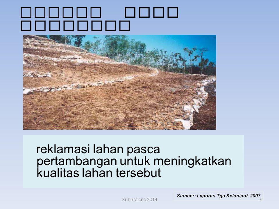 Lokasi Nusa Tenggara reklamasi lahan pasca pertambangan untuk meningkatkan kualitas lahan tersebut.