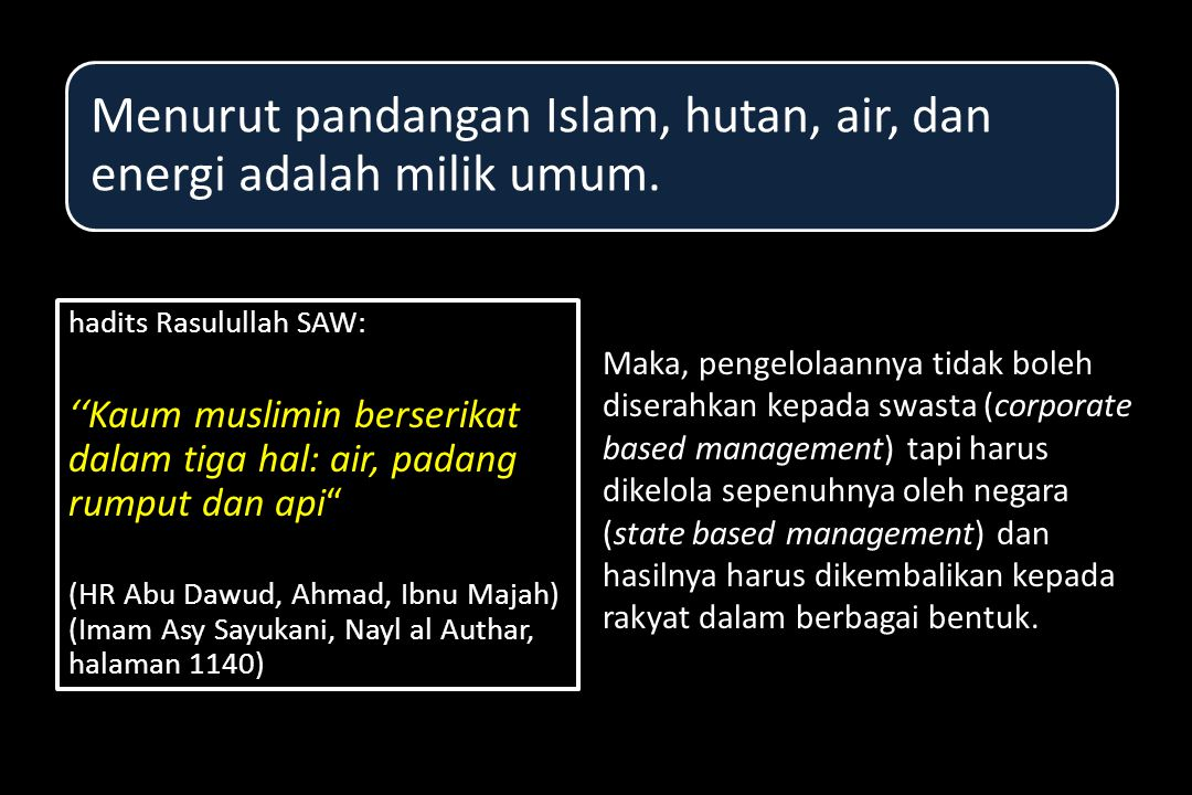 Menurut pandangan Islam, hutan, air, dan energi adalah milik umum.