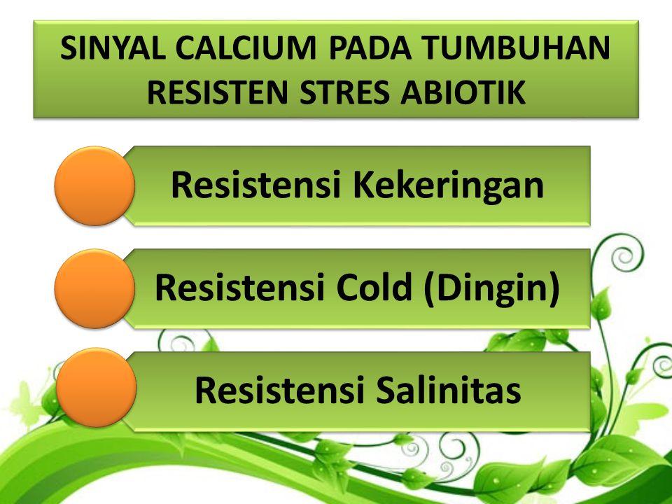 SINYAL CALCIUM PADA TUMBUHAN RESISTEN STRES ABIOTIK