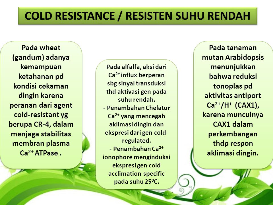 COLD RESISTANCE / RESISTEN SUHU RENDAH