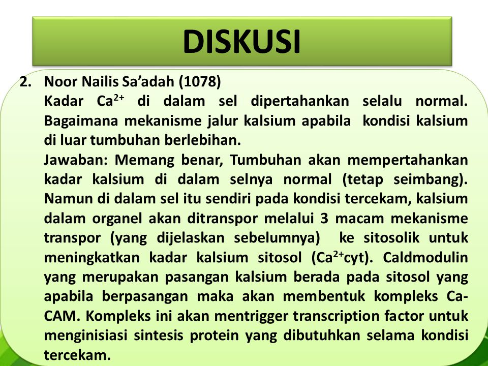 DISKUSI Noor Nailis Sa'adah (1078)