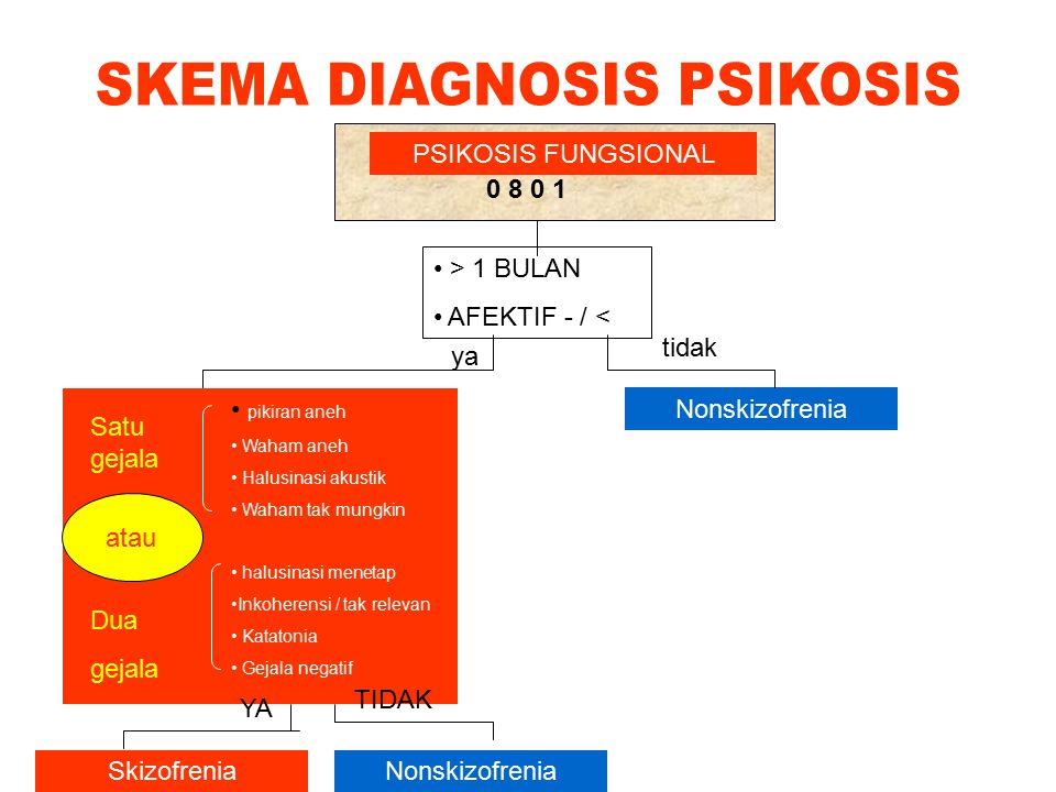 SKEMA DIAGNOSIS PSIKOSIS