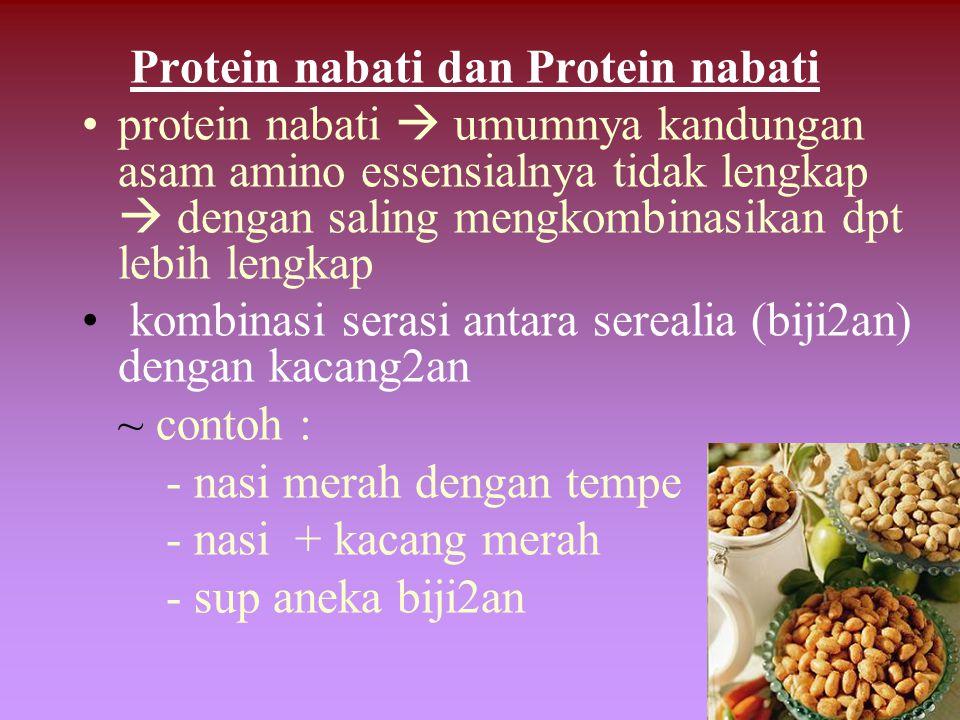 Protein nabati dan Protein nabati