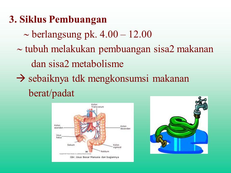 3. Siklus Pembuangan ~ berlangsung pk. 4.00 – 12.00. ~ tubuh melakukan pembuangan sisa2 makanan. dan sisa2 metabolisme.