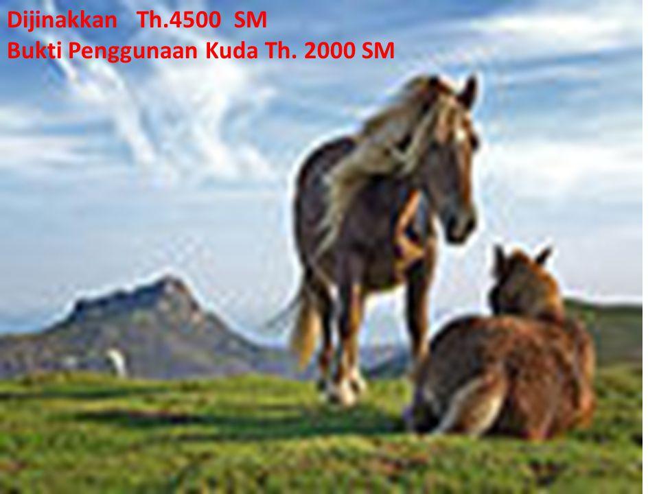Dijinakkan Th.4500 SM Bukti Penggunaan Kuda Th. 2000 SM