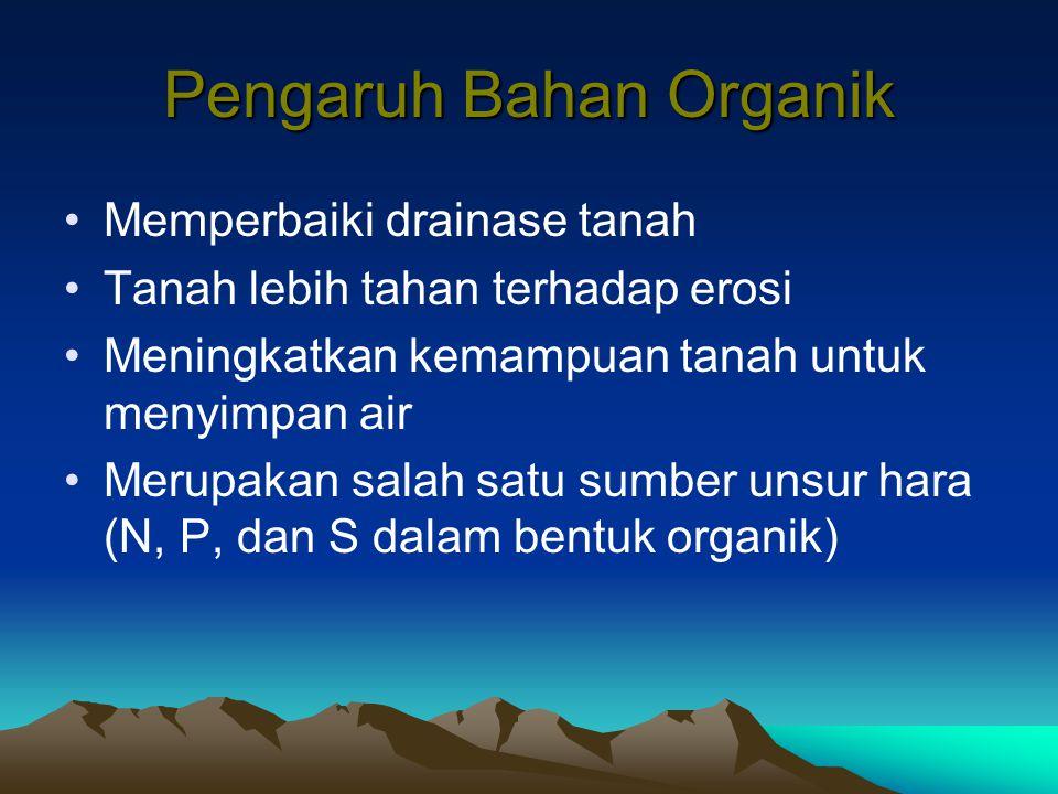 Pengaruh Bahan Organik