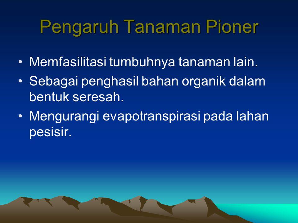 Pengaruh Tanaman Pioner