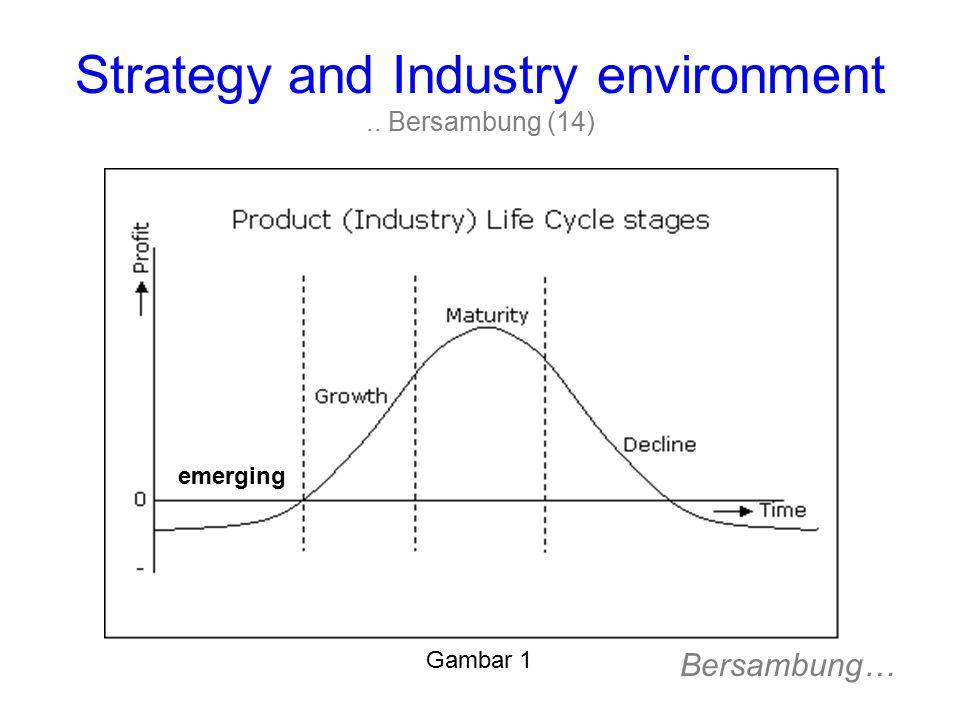 Strategy and Industry environment .. Bersambung (14)