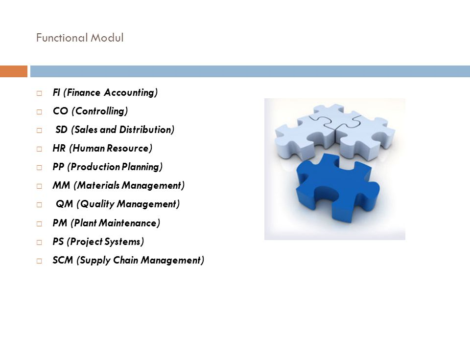 Functional Modul FI (Finance Accounting) CO (Controlling)