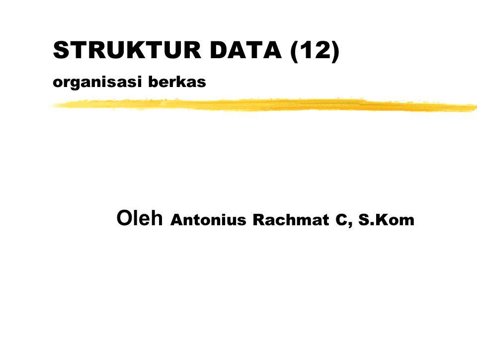 STRUKTUR DATA (12) organisasi berkas