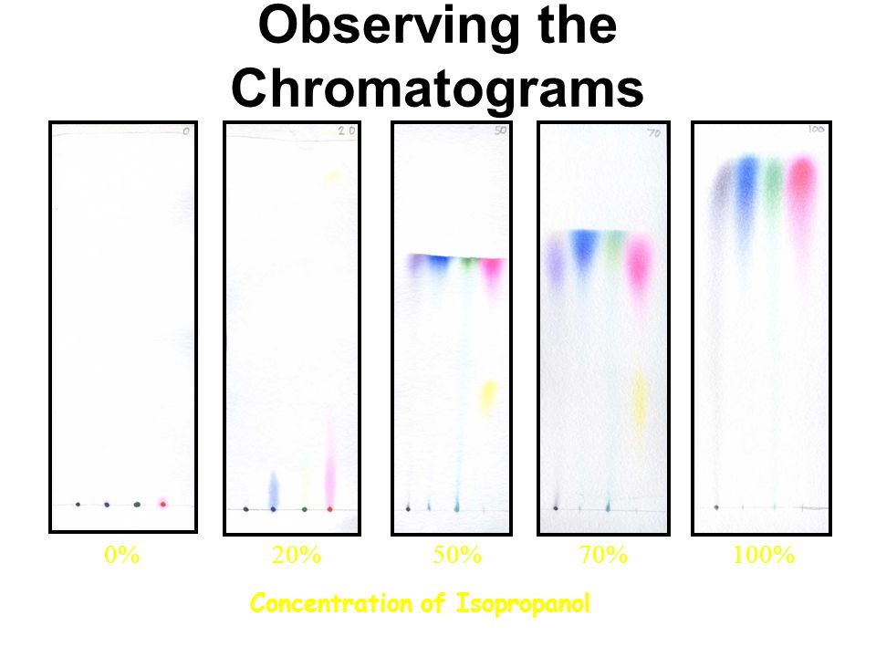 Observing the Chromatograms