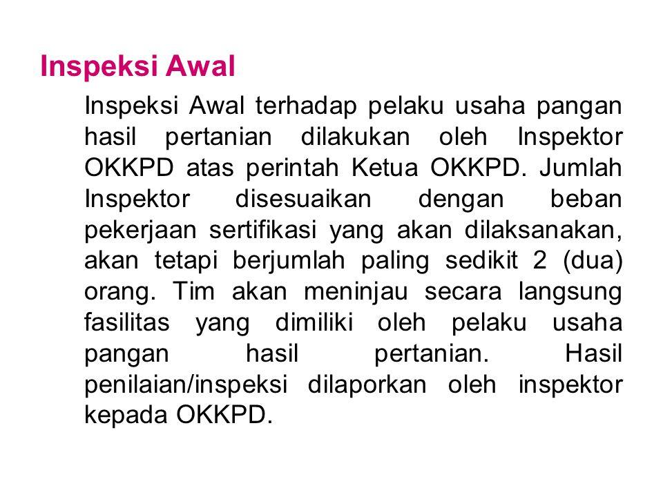 Inspeksi Awal