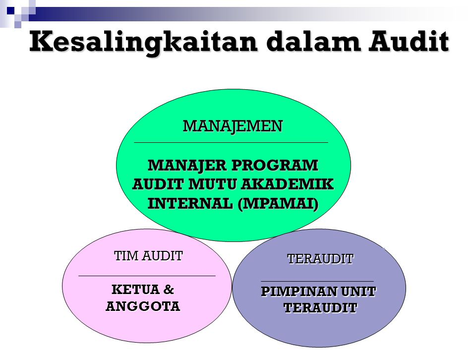 MANAJER PROGRAM AUDIT MUTU AKADEMIK INTERNAL (MPAMAI)